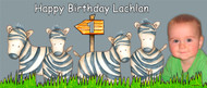 Personalized kids birthday party banner with photo - Wild zebra theme. Order online in Australia
