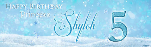 custom-themed-birthday-party-banners-for-kids-frozen-party-design