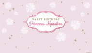 Personalized & custom adults or kids birthday party banner or backdrop. Your message and text. Pink princess party theme.