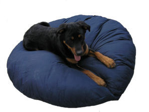 Cat & Dog Beds