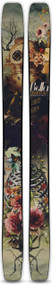 Moment Bella Women's Skis