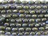 Jeweltone Faceted Pearl Beads 8mm (PRL44)