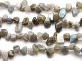 Labradorite Petal Gemstone Beads 12mm (GS3278)
