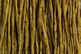 "Mustard Yellow Hand Stitched Silk Cord 42"" (SK36)"
