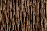 """Beige Hand Stitched Silk Cord 42"""" (SK41)"""