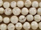 Round Shell w/Swirl Beads 15mm (SH450)