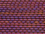 Purple Electroplated Hematite Rice Gemstone Beads 5-6mm (GS3707)