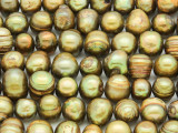Olive Green Irregular Potato Pearl Beads 8-12mm (PRL196)