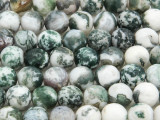 Tree Agate Faceted Round Gemstone Beads 10mm (GS4294)