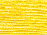 Yellow Glass Seed Beads - 11/0 (SB154)