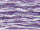 Purple AB Glass Seed Beads - 11/0 (SB162)
