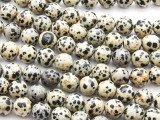 Dalmatian Jasper Round Gemstone Beads 10mm (GS4464)