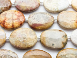 Fossil Coral Agate Oval Tabular Gemstone Beads 38-40mm (GS4718)
