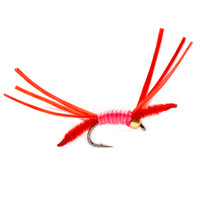 Hise's Medusa Worm Cluster- Red