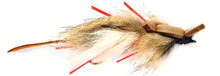 Lynch's White Bellied Mouse