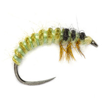 Tactical Oliver Edwards Rhyacophila Larva