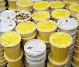 Raw Shea Butter Yellow - 25 lb Box