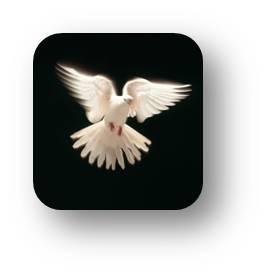 peace-dove-tachyon.jpg