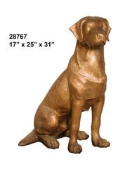 Golden Labrador, Sitting
