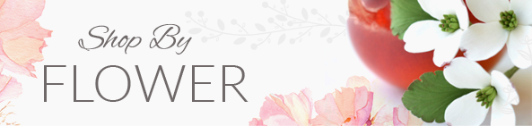 Shop By Flower