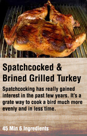 Spatchcocked and Grilled Turkey