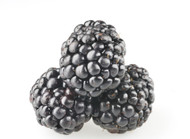 Blackberry (Organic)