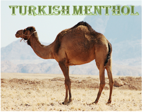 Turkish Menthol e-juice by Velvet Vapors