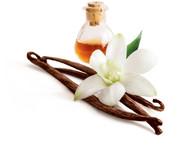PG-Free Velvet Vanilla e-juice by Velvet Vapors