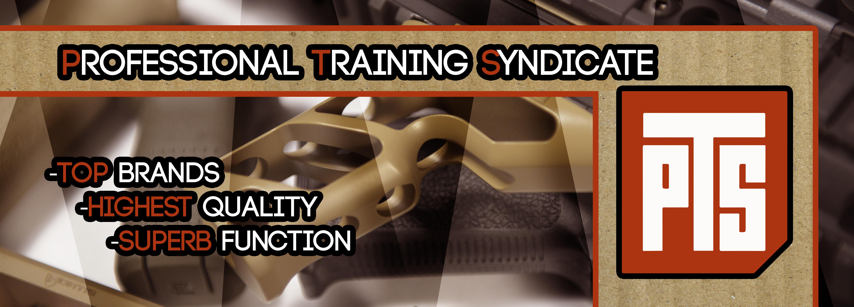 Professional Training Simulation