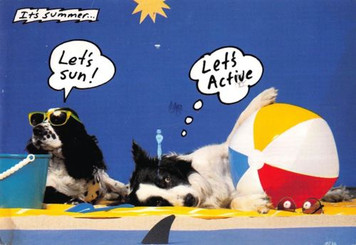 Let's Active Every Dog Has His Day I.R.S. Records Promo Postcard 1988