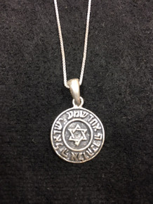 Sterling Silver Jewish Star Medalion Necklace
