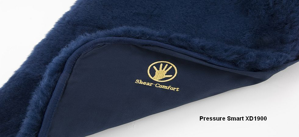 Pressure Smart XD 1900
