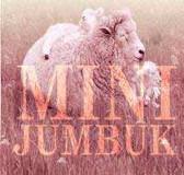 R215: MiniJumbuk SuperWool Underlay