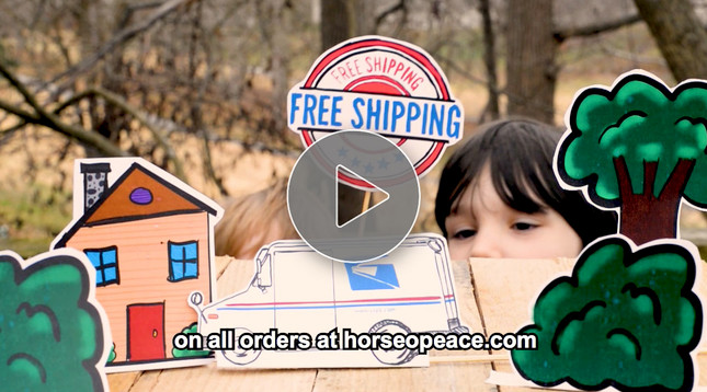 Free Shipping Video for December 2017