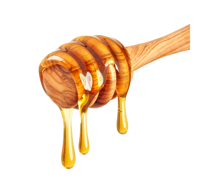 Golden Organic Honey Dripping from Stick on White Background