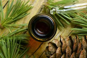 pine-essential-oils-300px.jpg