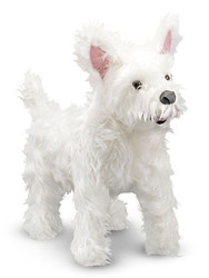 Wesley the West Highland Terrier