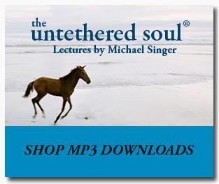 Shop-Downloads