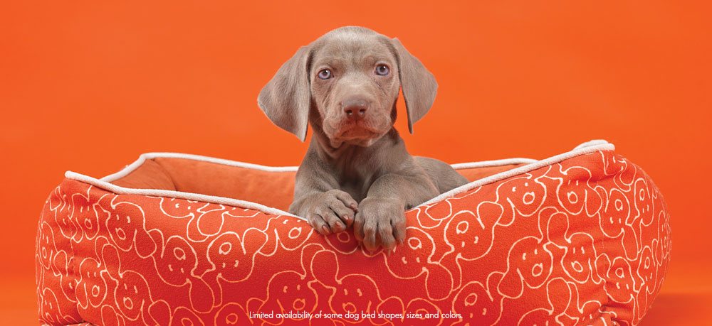 Sit Happens. Stain, Moisture & Odor Resistant Dog Beds.