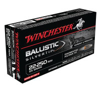 Ballistic Silvertip .22-250 Remington 55 Grain - 020892213920