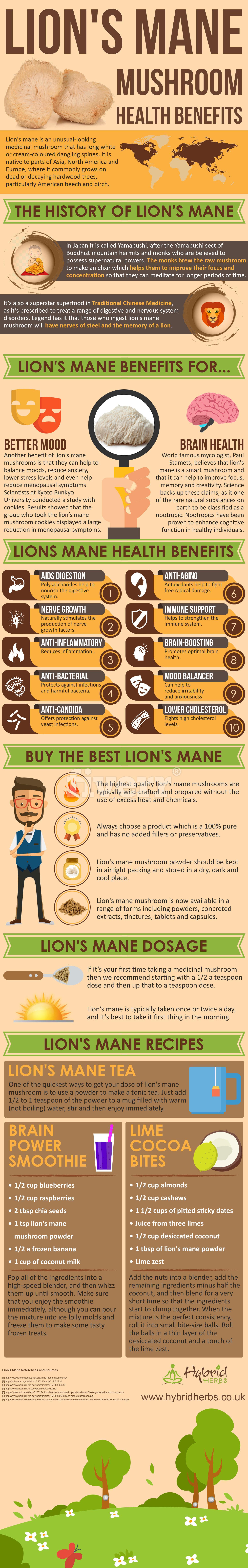 Lion S Mane Mushroom Uk Benefits - Best Lion 2017