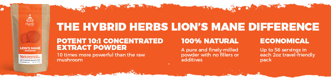 lions-mane-powder-extract-difference.jpg
