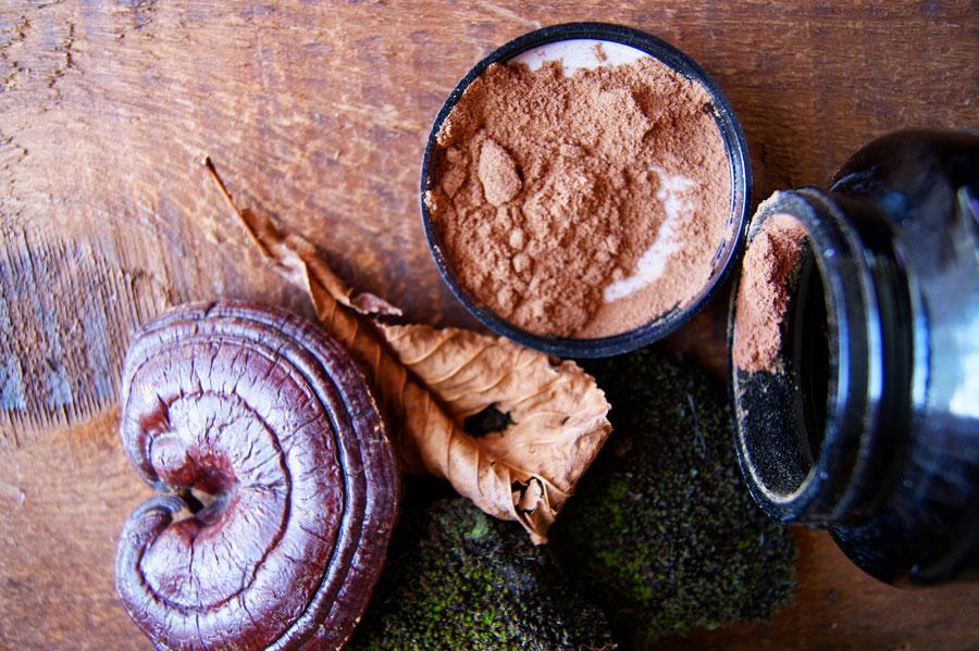 medicinal-mushroom-complex-extract-powder.jpg