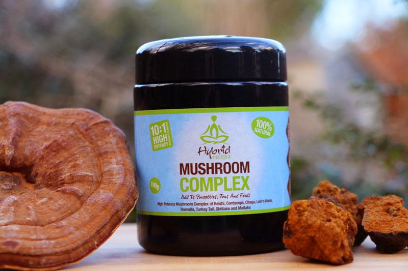 medicinal-mushroom-complex-powder.jpg