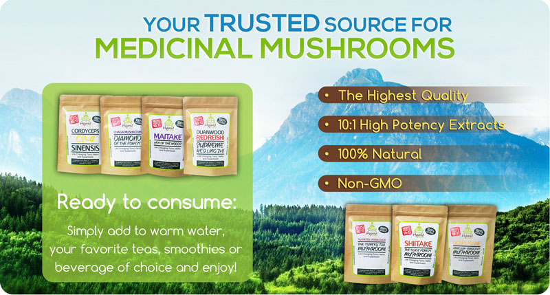medicinal-mushroom-supplements-3-.jpg