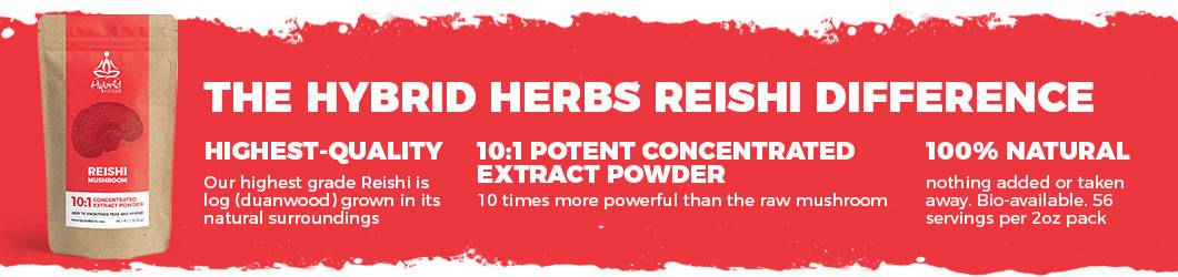reishi-mushroom-powder-extract-difference.jpg