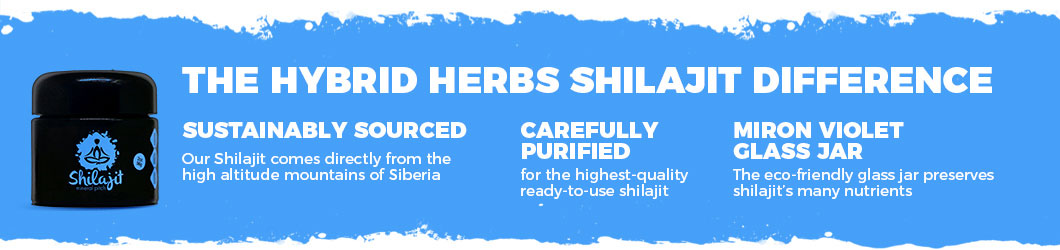 ways-to-use-shilajit.jpg