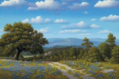 Texas Treasures by R. W. Hedge