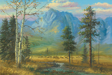 Buffalo Wildlife Canvas Art Prints   RW Hedge Free