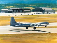 Texas Giant (B-36) by K Price Randel